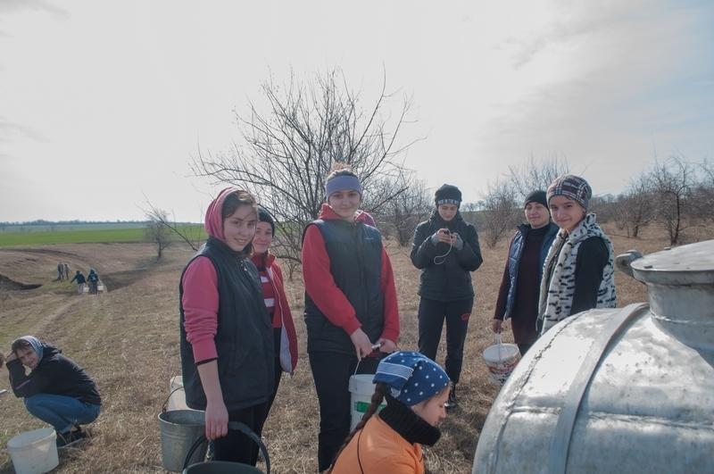 Воспитанники церковной школы села Копчак посадили саженцы акации