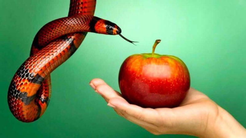 Что такое грех и какие бывают грехи?