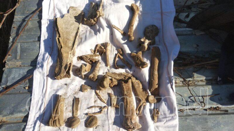 В Чишмикиое на территории храма нашли останки предположительно человеческие